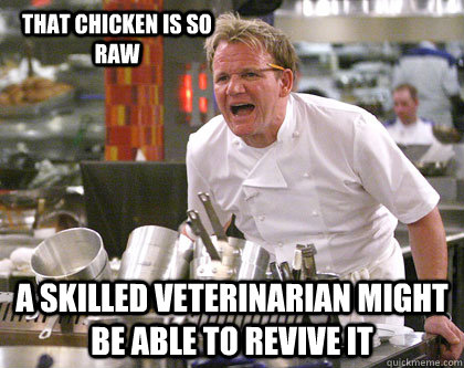 a skilled veterinarian might be able to revive it that chicken is so raw  Ramsay Gordon Yelling
