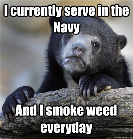 I currently serve in the Navy  And I smoke weed everyday - I currently serve in the Navy  And I smoke weed everyday  Confession Bear