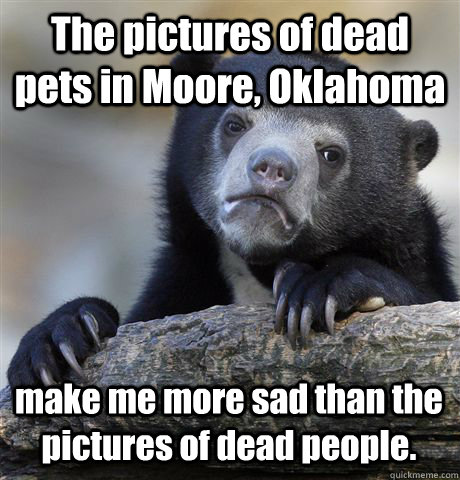 The pictures of dead pets in Moore, Oklahoma  make me more sad than the pictures of dead people. - The pictures of dead pets in Moore, Oklahoma  make me more sad than the pictures of dead people.  Confession Bear