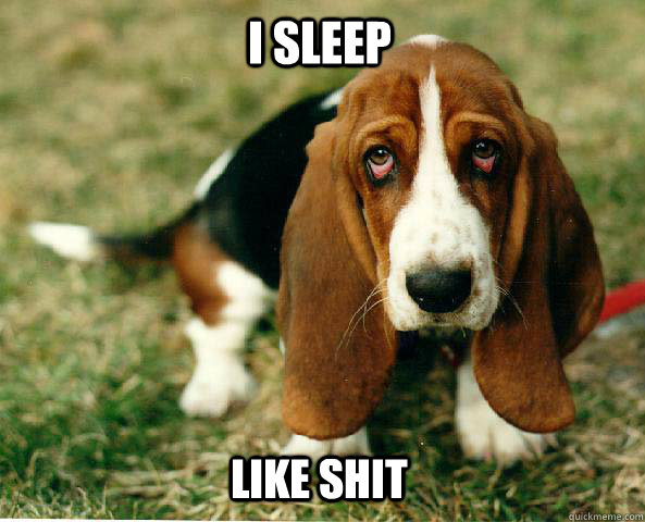 I sleep Like shit  Basset Hound of guilt