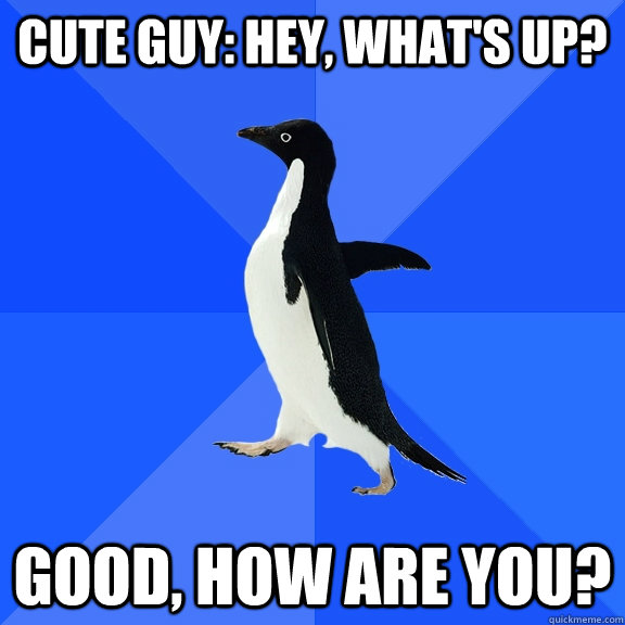cute guy: hey, what's up? good, how are you? - cute guy: hey, what's up? good, how are you?  Socially Awkward Penguin