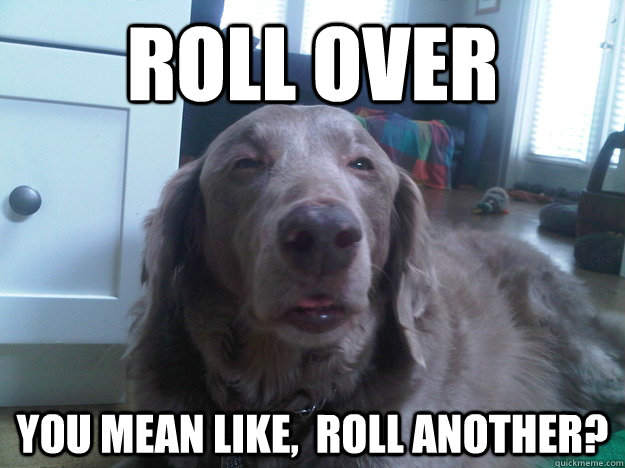 Roll over you mean like,  roll another? - Roll over you mean like,  roll another?  10 Dog