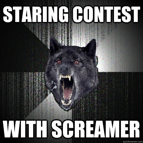 Staring contest with screamer - Staring contest with screamer  Insanity Wolf