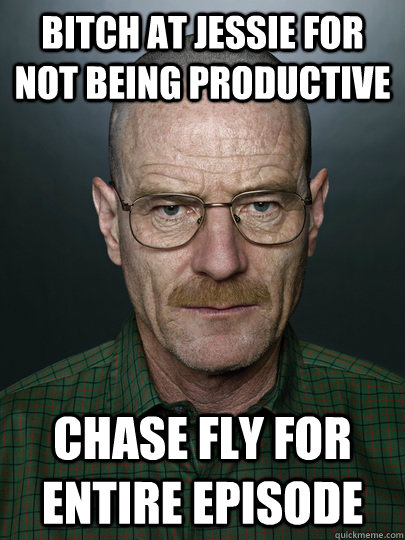 bitch at jessie for not being productive chase fly for entire episode