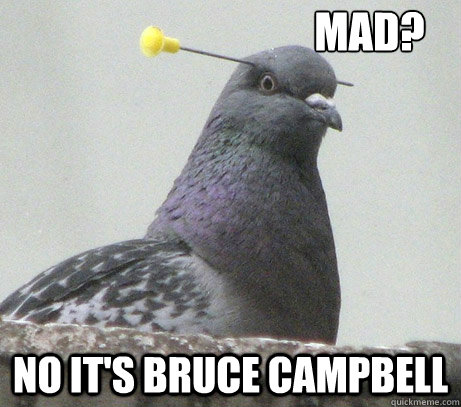 mad? no it's bruce campbell