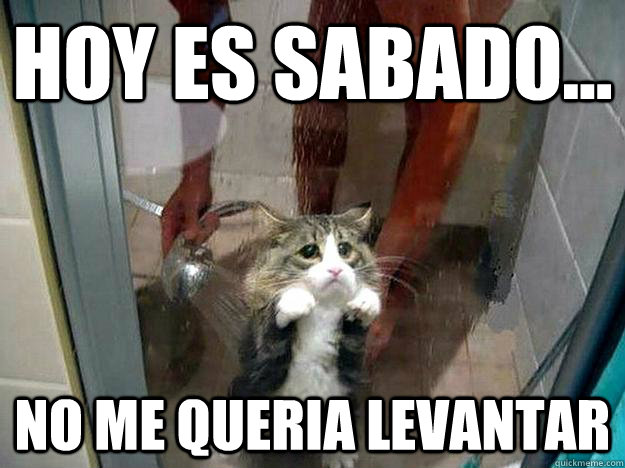 HOY ES SABADO... NO ME QUERIA LEVANTAR