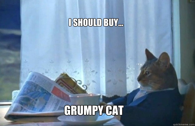 I should buy... grumpy cat - I should buy... grumpy cat  Sophisticated Cat