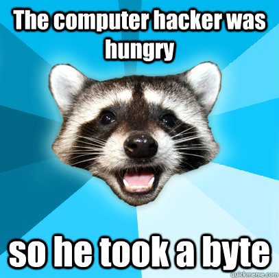 The computer hacker was hungry so he took a byte  - The computer hacker was hungry so he took a byte   Lame Pun Coon