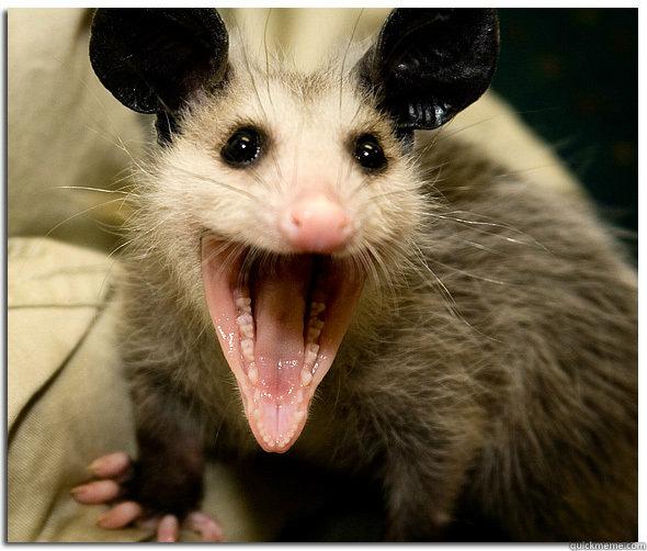 Over-Excited Possum