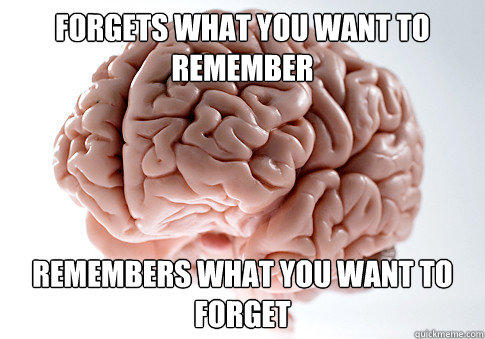 forgets what you want to remember remembers what you want to forget - forgets what you want to remember remembers what you want to forget  Scumbag Brain