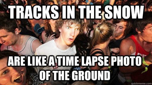 Tracks in the snow are like a time lapse photo of the ground - Tracks in the snow are like a time lapse photo of the ground  Sudden Clarity Clarence