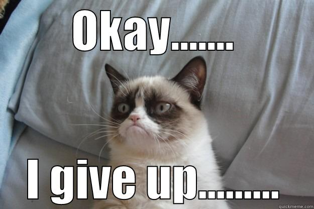I give up - OKAY....... I GIVE UP......... Grumpy Cat