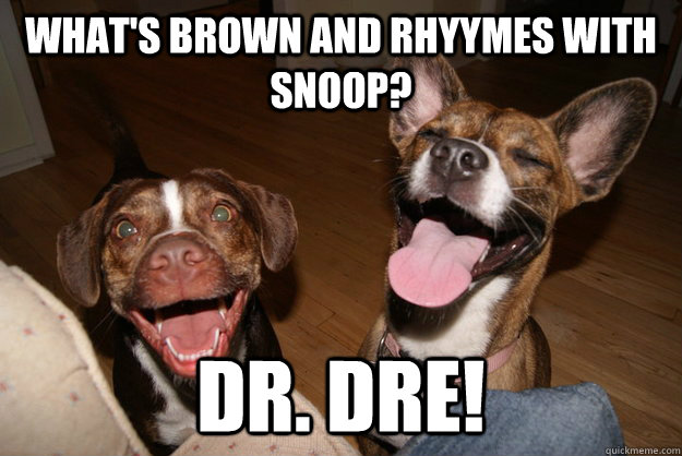 What's brown and rhyymes with snoop? Dr. Dre!