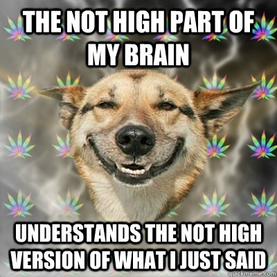 The not high part of my brain understands the not high version of what i just said - The not high part of my brain understands the not high version of what i just said  Stoner