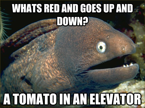 Whats red and goes up and down? a tomato in an elevator - Whats red and goes up and down? a tomato in an elevator  Bad Joke Eel