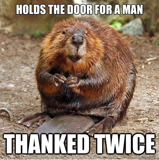 holds the door for a man thanked twice - holds the door for a man thanked twice  The Gratuitous Beaver