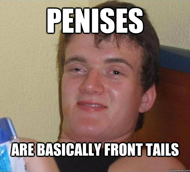 penises are basically front tails  - penises are basically front tails   The High Guy