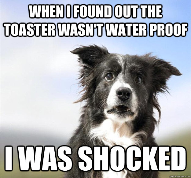 When I found out the toaster wasn't water proof I was shocked - When I found out the toaster wasn't water proof I was shocked  Misc