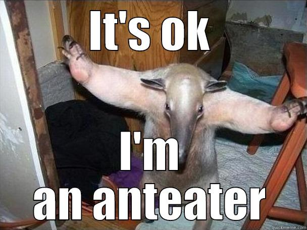IT'S OK I'M AN ANTEATER I got this