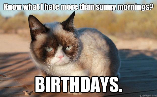 Grumpy Cat Birthdays memes | quickmeme
