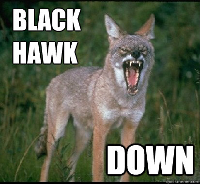BLACK     HAWK DOWN -     BLACK     HAWK DOWN  YELLING YOTES FAN COYOTE