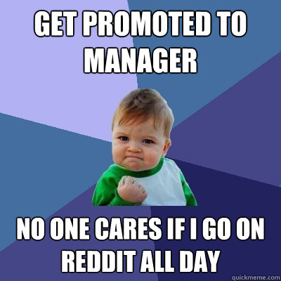 get promoted to manager no one cares if i go on reddit all day - get promoted to manager no one cares if i go on reddit all day  Success Kid