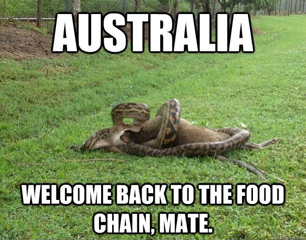 ee4ee4154d6044ac5c36916662a8974068a721c6d968ff003603470e286a43a2 meanwhile in australia (no f*cks were given) australia, memes and