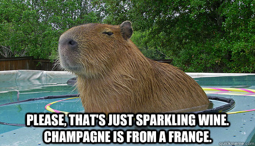 Please, that's just sparkling wine. Champagne is from a france. - Please, that's just sparkling wine. Champagne is from a france.  Pretentious Capybara