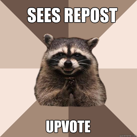 Sees repost Upvote - Sees repost Upvote  Evil Plotting Raccoon