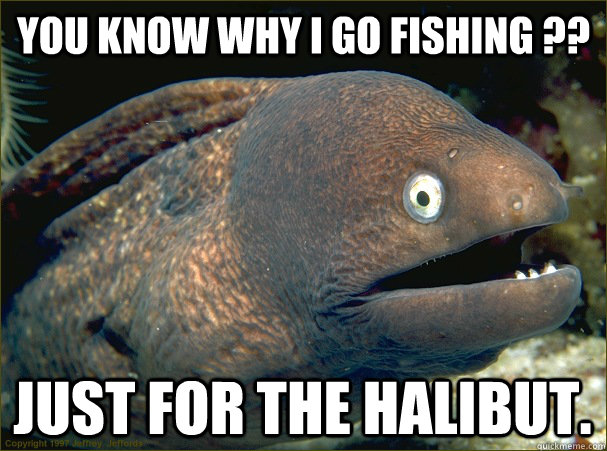 you know why i go fishing ?? just for the halibut. - you know why i go fishing ?? just for the halibut.  Bad Joke Eel
