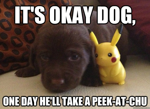It's okay dog, one day he'll take a peek-at-chu