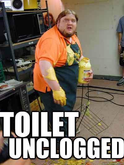 toilet unclogged