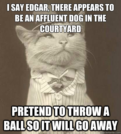 I say edgar, there appears to be an affluent dog in the courtyard Pretend to throw a ball so it will go away - I say edgar, there appears to be an affluent dog in the courtyard Pretend to throw a ball so it will go away  Aristocat