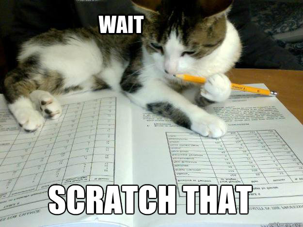 Wait Scratch that - Wait Scratch that  Study Cat