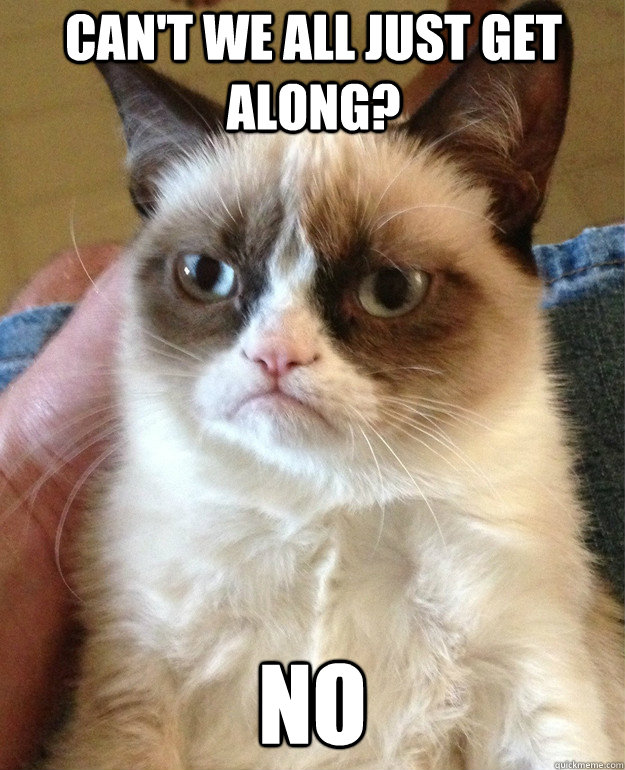 Can't we all just get along? No - Can't we all just get along? No  Grumpy Cat