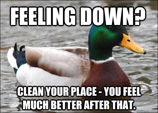 feeling down? clean your place - you feel much better after that. - feeling down? clean your place - you feel much better after that.  Actual Advice Mallard