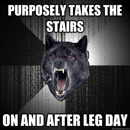 PURPOSELY TAKES THE STAIRS ON AND AFTER LEG DAY - PURPOSELY TAKES THE STAIRS ON AND AFTER LEG DAY  Insanity Wolf