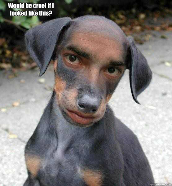 Would be cruel if I looked like this?  - Would be cruel if I looked like this?   DogMan