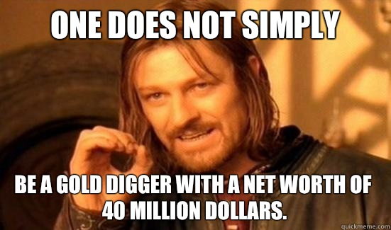One Does Not Simply Be a gold digger with a net worth of  40 million dollars. - One Does Not Simply Be a gold digger with a net worth of  40 million dollars.  Boromir