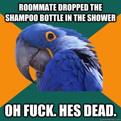 Roommate dropped the shampoo bottle in the shower Oh fuck. Hes dead.  Paranoid Parrot