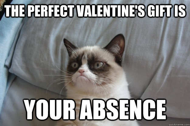 The perfect valentine's gift is Your absence - The perfect valentine's gift is Your absence  GrumpyCatOL