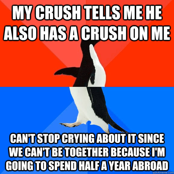 My crush tells me he also has a crush on me can't stop crying about it since we can't be together because I'm going to spend half a year abroad - My crush tells me he also has a crush on me can't stop crying about it since we can't be together because I'm going to spend half a year abroad  Socially Awesome Awkward Penguin
