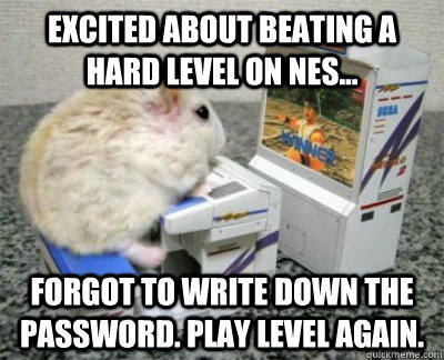 Excited about beating a hard level on NES... forgot to write down the password. play level again.