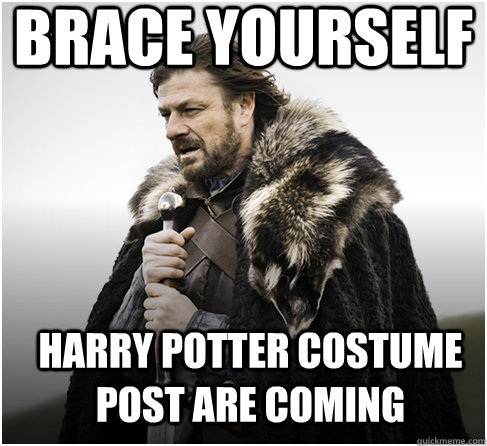 brace yourself Harry Potter costume post are coming