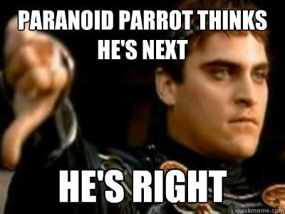 Paranoid Parrot Thinks He's Next he's right - Paranoid Parrot Thinks He's Next he's right  Downvoting Roman