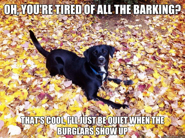 Oh, you're tired of all the barking? That's cool, I'll just be quiet when the burglars show up