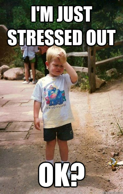 Funny Stressed Out Meme : Stressed out meme