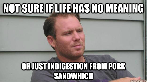 not sure if life has no meaning or just indigestion from pork
