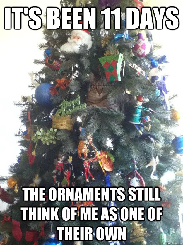 IT'S BEEN 11 DAYS THE ORNAMENTS STILL THINK OF ME AS ONE OF THEIR OWN - IT'S BEEN 11 DAYS THE ORNAMENTS STILL THINK OF ME AS ONE OF THEIR OWN  Misc