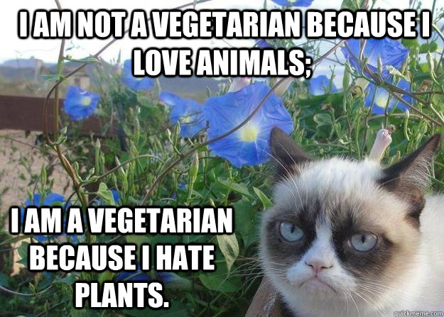 I am not a vegetarian because I love animals;   I am a vegetarian because I hate plants.